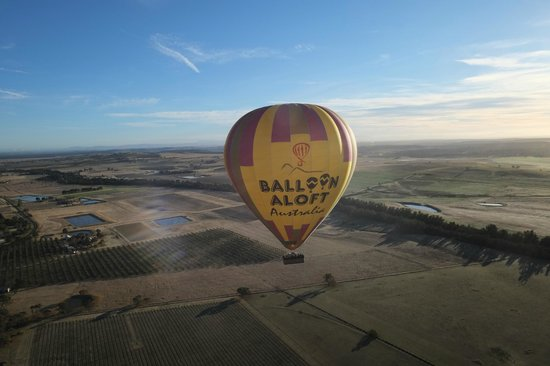 Balloon Aloft Hunter Valley Day Tours : In the air