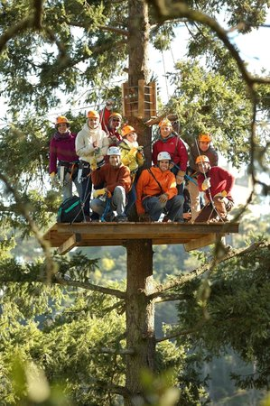 Sintra Canopy: Groups up to 10