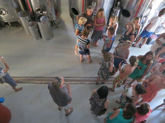 Zambartas Winery: During the winetour..