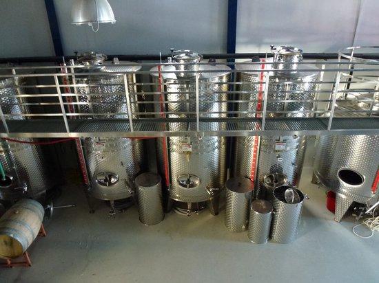 Zambartas Winery: Fermentation tanks
