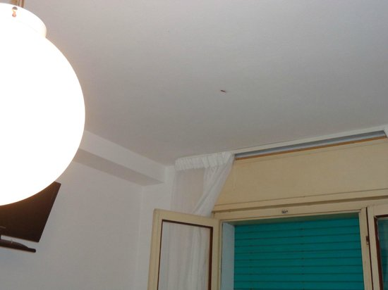 Hotel Antonella : CAMERA