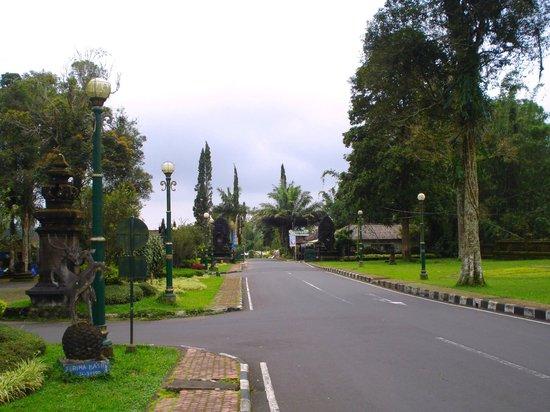 Di Sekitar Taman Tematik Picture Of Bali Botanic Garden