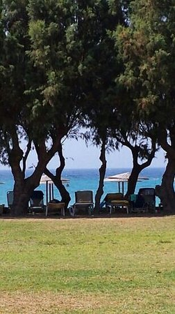 Alex Beach Hotel: vue sur la plage depuis la piscine enfants