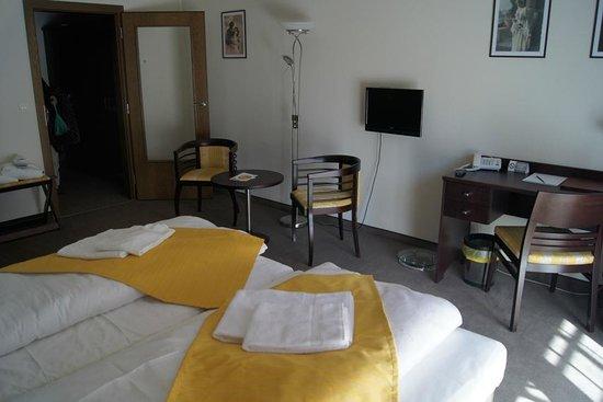 Hotel Studanka: Zimmerbeispiel 2