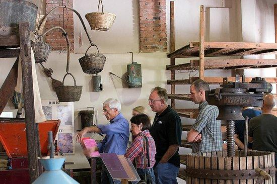 Museo del Vino: Un gruppo in visita