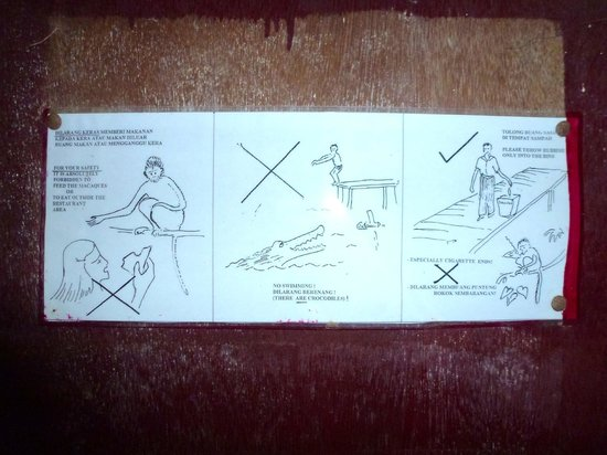Rimba Orangutan Eco Lodge: Warning sign at the lodge - plenty of wildlife in and around the lodge