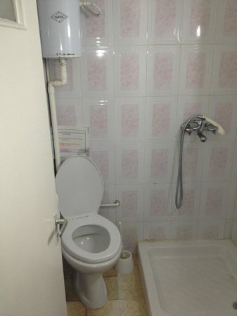 Banana Place: A bath closet, with overflowing toilet brush stand