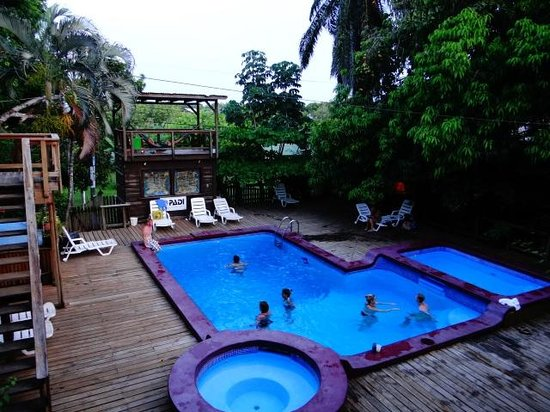 Mango Inn Resort: The pool area.