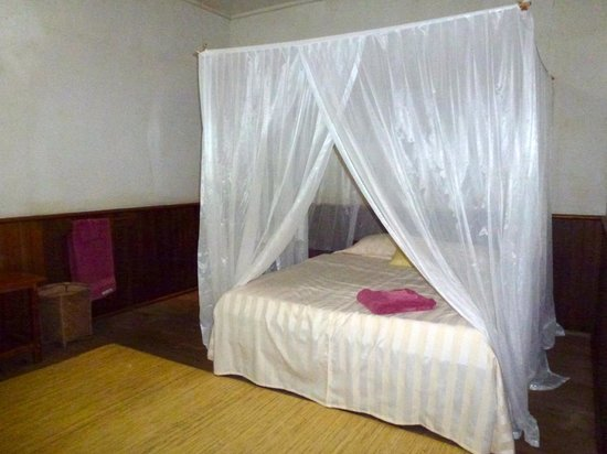 Rimba Orangutan Eco Lodge: Sapphire room