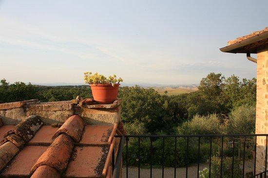 Agriturismo La Busca: Vue sur la campagne Toscane