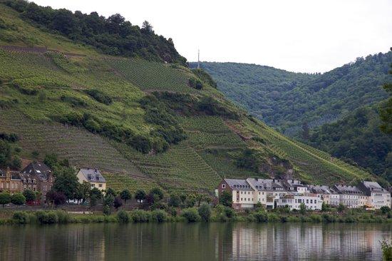 Hotel Villa Melsheimer: Local walking
