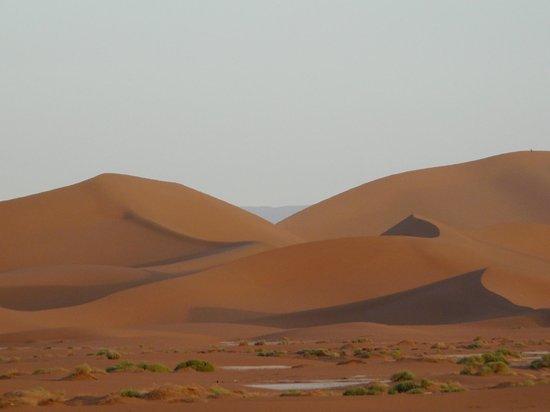 Erg Chigaga : Dunes