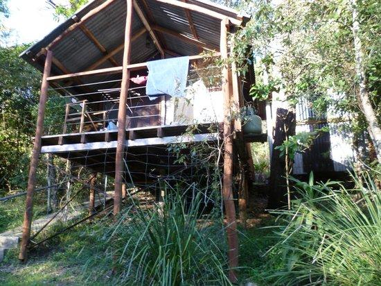 Clarence River Wilderness Lodge: Bushmans hut