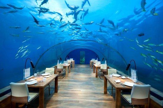 Ithaa undersea restaurant at Conrad Maldives Rangali Island