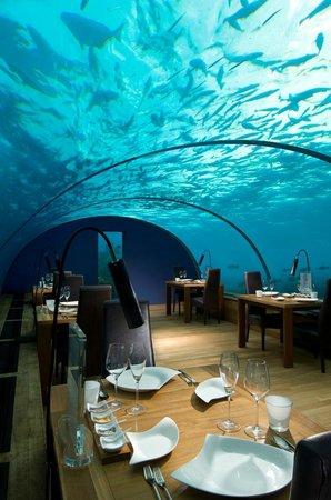 Ithaa Undersea Restaurant, Rangali Island - Restaurant ...