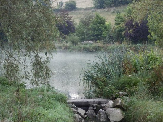 The Lake Early Morning Picture Of Warleigh House
