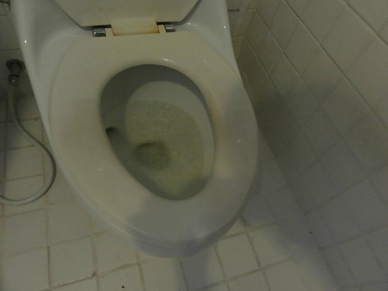 Evergreen Resort : Stains on the toilet seat