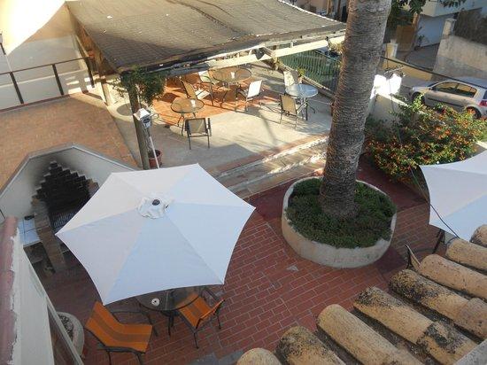 La Mimosa Guesthouse: Terrazza dell'Hostel
