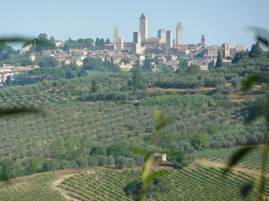 Borgo Montauto: View from the Agriturismo
