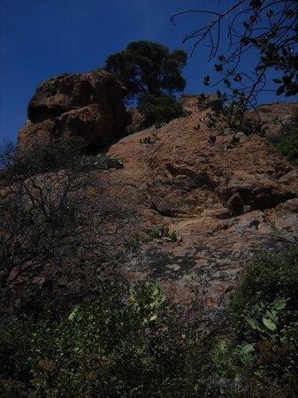 Cap du Dramont : scalata dramont 1