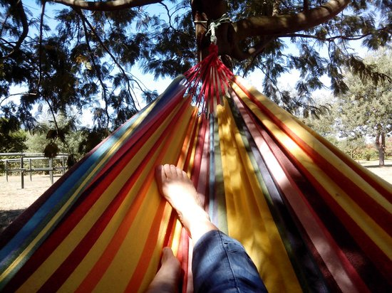 Hotel Mas Rabiol: tranquilidad