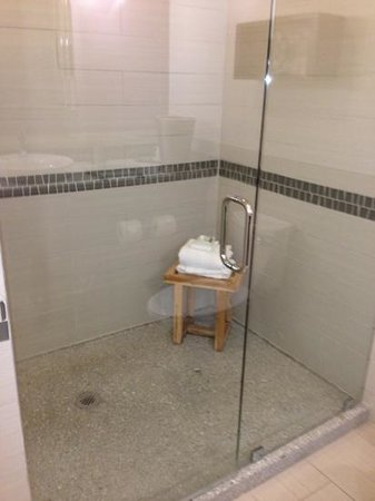 Hotel Indigo Asheville Downtown : Spotless Walk-in Shower King Penthouse