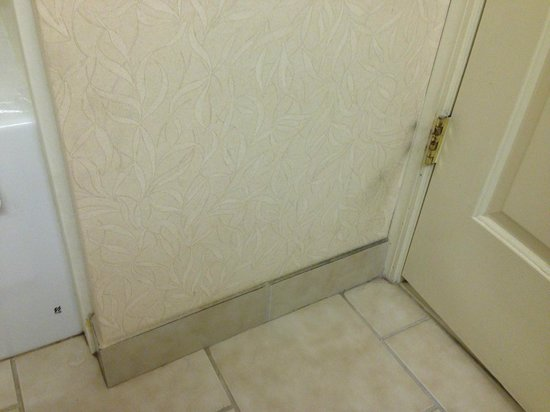 Country Inn & Suites by Radisson, London, KY: Rust running down shower, looked horrible.
