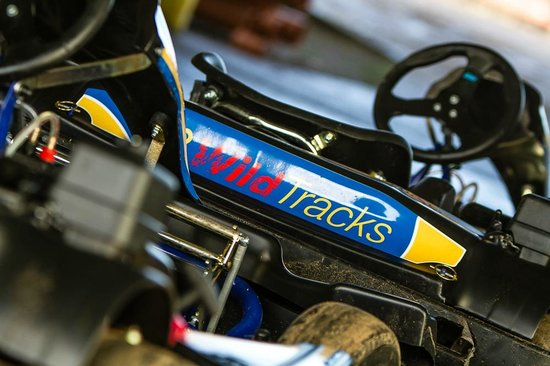 Wild Tracks: Karting at WildTracks