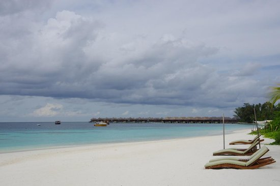 Coco Bodu Hithi: Beach in front of the room 302