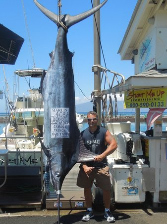 Start Me Up, Sport Fishing : 408lb Blue Marlin!