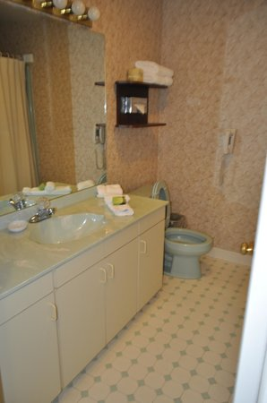 Roosevelt Inn & Suites: Room 130