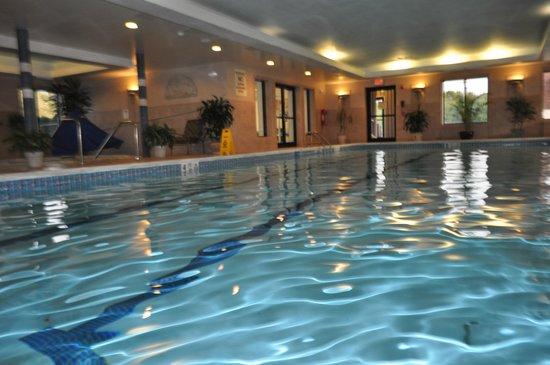 Roosevelt Inn & Suites: Indoor Pool
