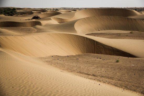 top thar desert sunset - photo #40
