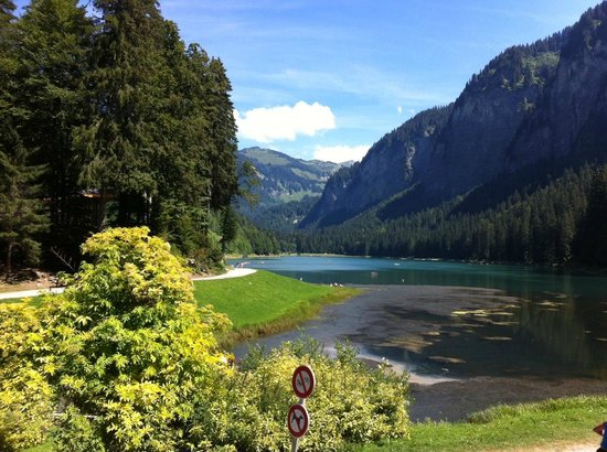 Chalet Magali: Lake Montriond