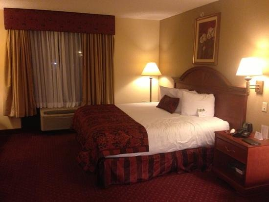 Wingate by Wyndham at Orlando International Airport: king bed