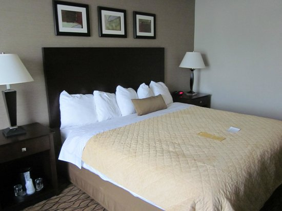 Wyndham Garden Glen Mills Wilmington: King room