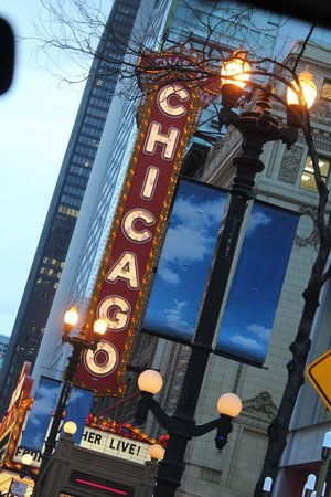 Chicago Private Tours: Final picture of the City Tour - classic Chicago!