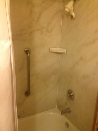 Wingate by Wyndham Orlando International Airport : shower