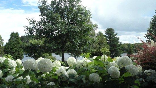Auberge du Lac-a-l'Eau-Claire : jardin