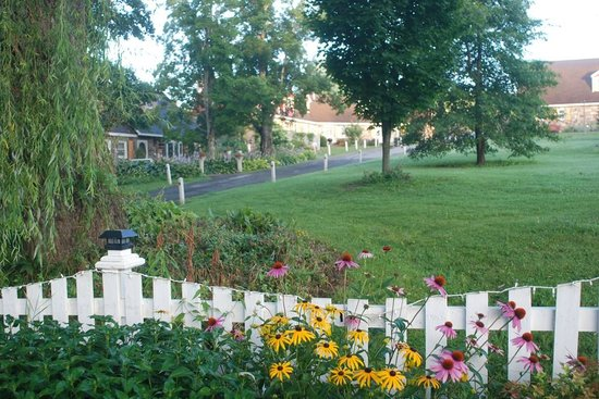 Fieldstone Farm: View of entrance fence and main buildings