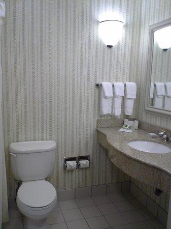 Hilton Garden Inn Milwaukee Park Place: Bathroom