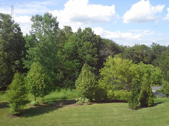 Hilton Garden Inn Milwaukee Park Place: Pleasant view