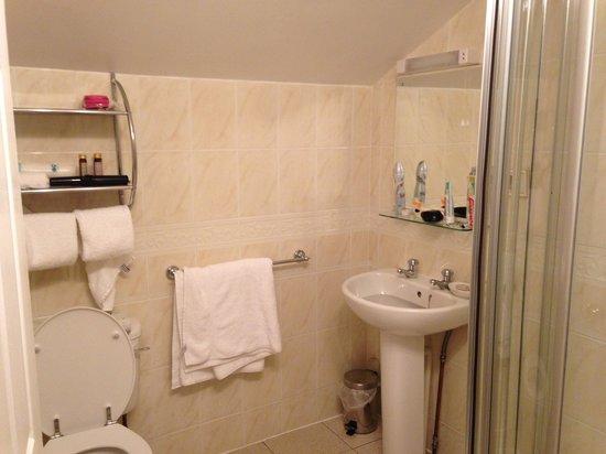 Limestone Hotel: Stable room bathroom