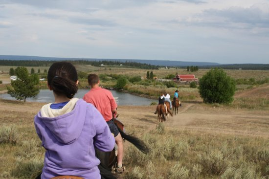 Yellowstone Horses - Eagle Ridge Ranch : On the way back to the barn