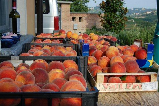 Cascina Vrona: peaches