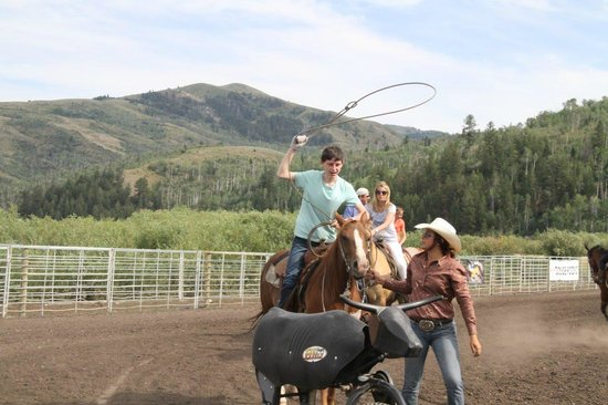 Introduction To Rodeo : Roping