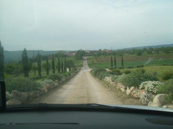 Driveway to Mas De La Tour