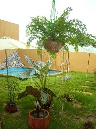 Residencial Santa Catalina: área de patio con vegetacion