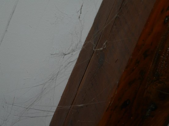 Chambre d'hotes les Indrins : toile araignée dans la chambre