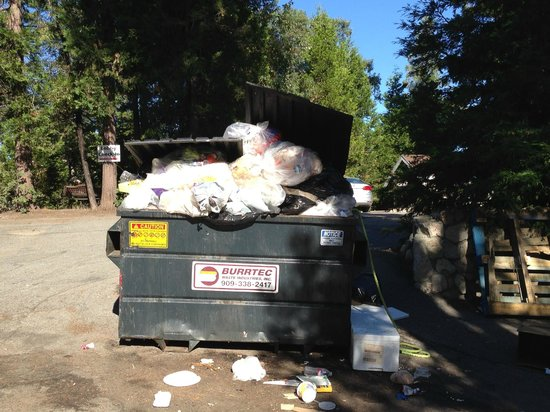 "Antlers Inn: See ""Lobby-Check In"" sign, behind this overflowing dumpster?  yes, that is where check-in"